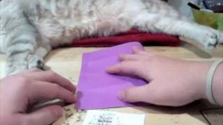 Easy Origami Tutorial #2: Simple Box (+crazy Cat!!)