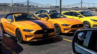 2018 Ford Mustang Shelby GT350 vs 2018 Ford Mustang GT || Exhaust Comparison