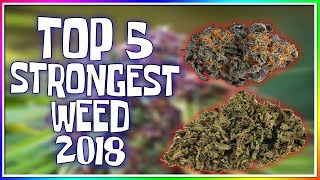 TOP 5 STRONGEST WEED STRAINS OF 2018! (BEST WEED TO GET HIGH!)