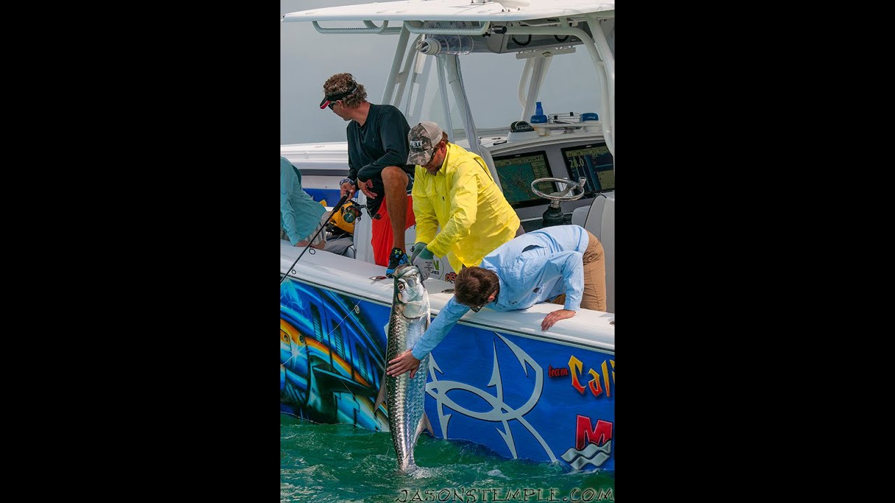 Into the blue a wish for fish todd blake season 6 for Into the blue fishing