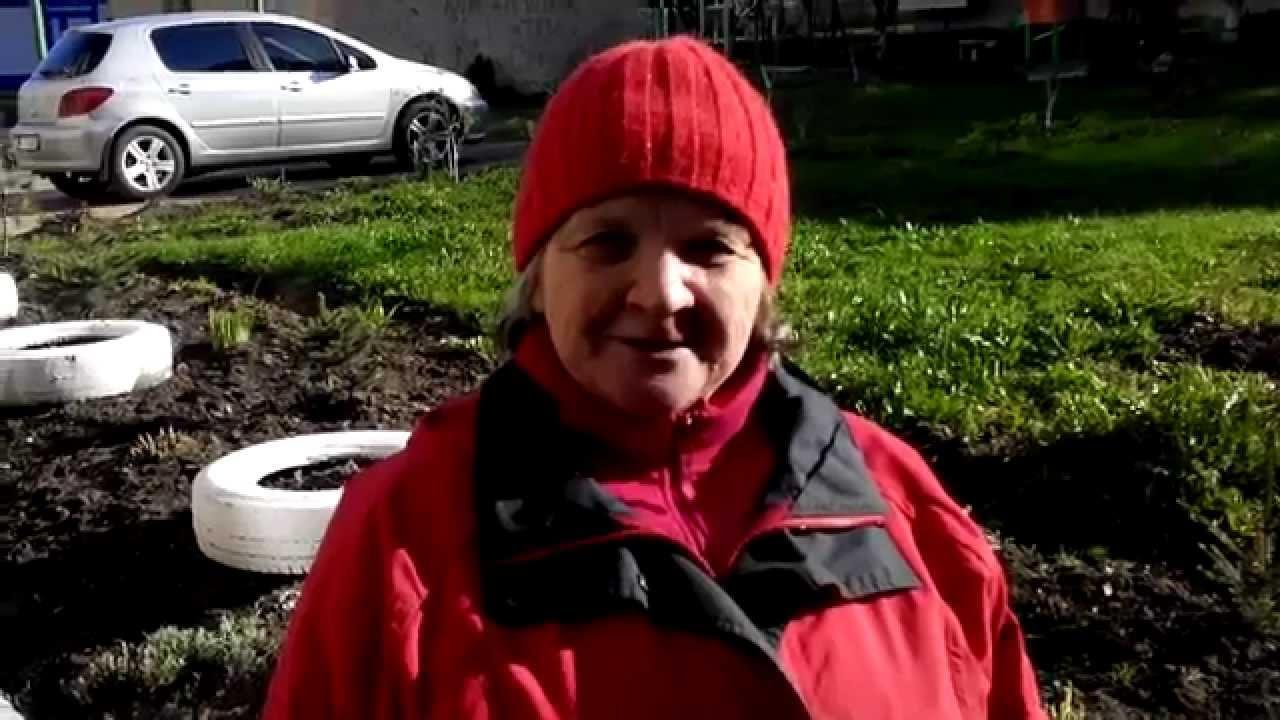 Пані Анна доглядає двір на проспекті Лесі Українки, 15 у Калуші