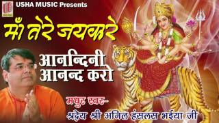 Anandini Anand Karo | Anil Hanslas Ji | Full HD Song 2016 | Maa Tere Jaikare
