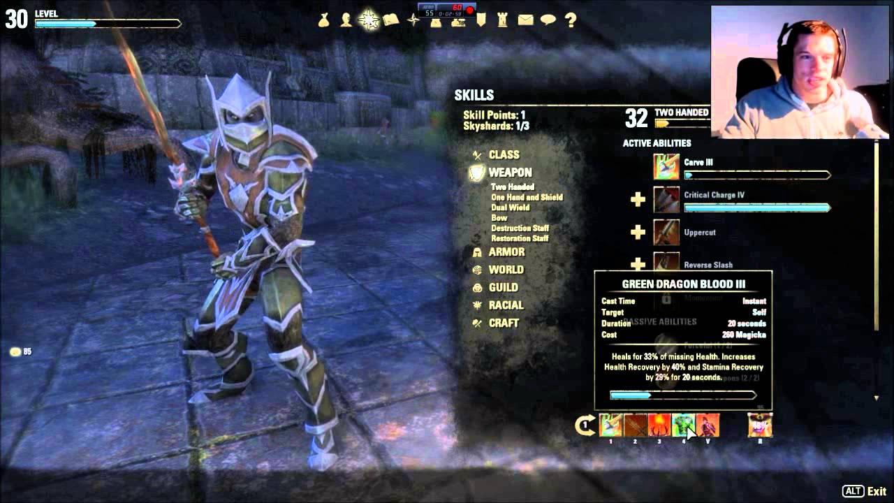 Magicka Dragonknight Dps Build