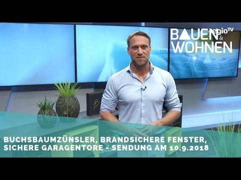 Heizungstausch online, Buchsbaumzünsler, brandsichere Fenster - Sendung am 10.9.2018