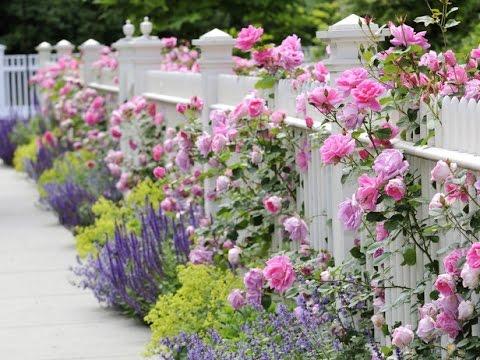 Сад в стиле шебби-шик – фото и советы ландшафтного дизайнера