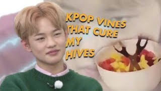 kpop vines that cured my hives
