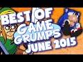BEST OF Game Grumps - June 2015