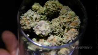 Watch Ice Berg Purple Haze video
