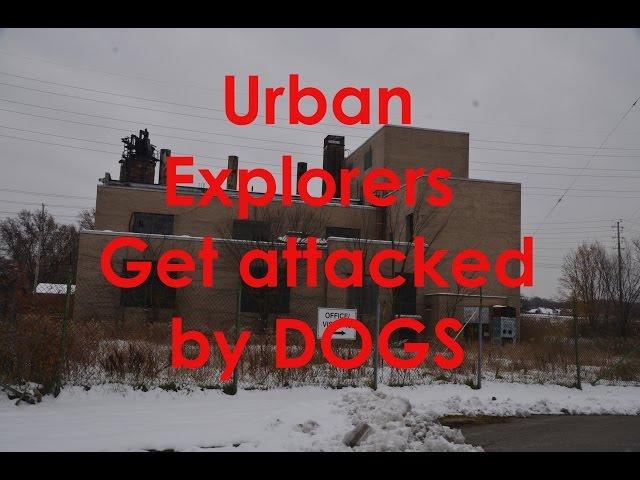 Abandoned East Cleveland