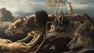 Soundtrack Mowgli (Theme Song 2019 - Epic Music) - Musique film Mowgli