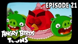 Download Song Angry Birds Toons | Hypno Pigs - S1 Ep21 Free StafaMp3