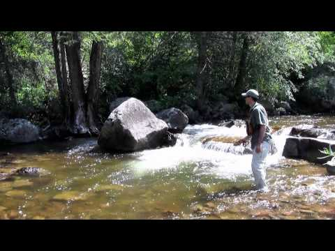 How to Fly Fish Colorado's Freestone Streams