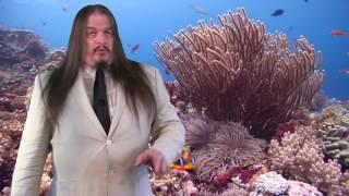 How Paleontology Disproves Noah's Flood