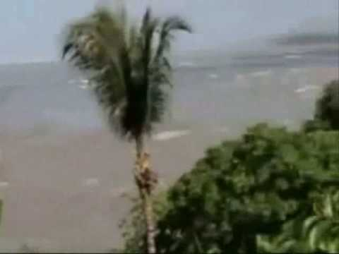 tsunami indonesia