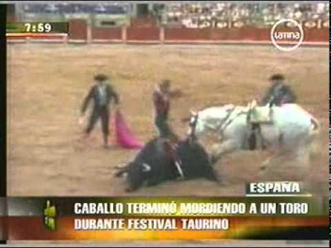 caballo de Pablo Hermoso de Mendoza muerde al toro.flv