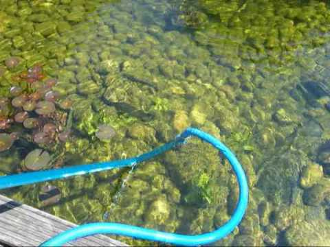 Die schlammhexe der profi teichsauger youtube for Gartenteich algen entfernen