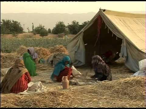 Towards Food Security in Afghanistan
