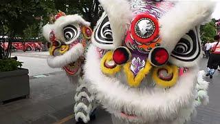 Liên Hoan Lân Sư Rồng Tp Hồ Chí Minh Lần 1 2016 * Diễu Hành Múa Lân Phố Đi Bộ