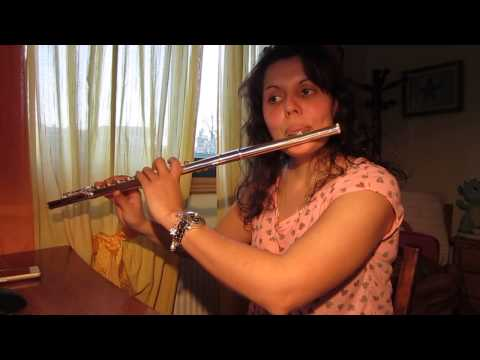 Do you want to build a snowman? - Frozen Theme - Cross Flute Cover