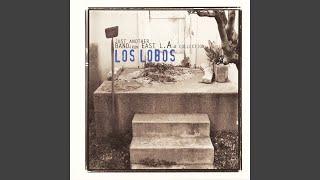 Los Lobos - El Cuchipe