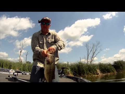 Shallow Water Bass Fishing with Jigs Minnesota Style