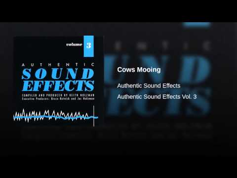 Jac Holzman - Authentic Sound Effects Volume 7