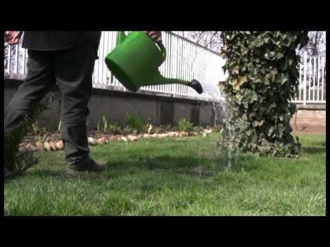 Tavaszi talajfertőtlenítés a kertben