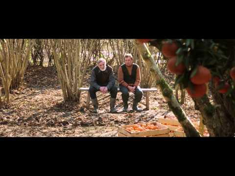 Trailer MANDARINAS (Dir. Zaza Urushadze)