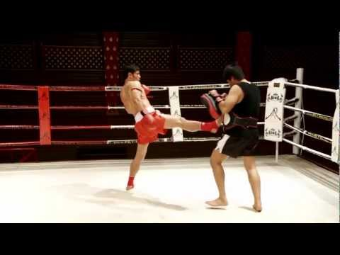 Pad Training: Saiyok Windysport / Pumphanmuang (Muay Thai DVD) Image 1