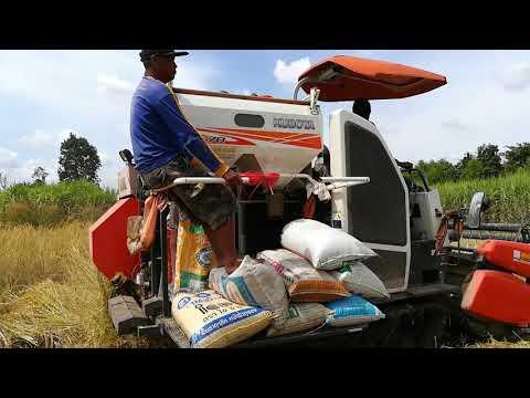 รถเกี่ยวข้าว | รถเกี่ยวคูโบต้า | KUBOTA Harvester