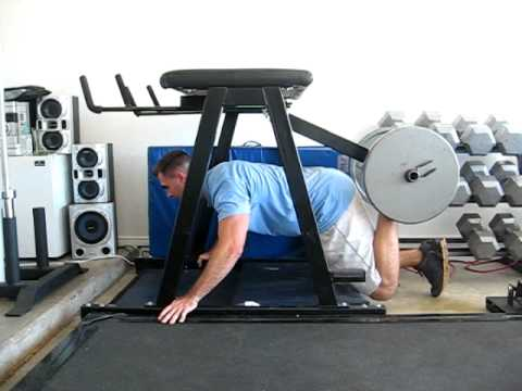 quadruped hip extension machine