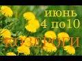 КОЗЕРОГИ ТАРО ПРОГНОЗ и АНАЛИЗ НЕДЕЛИ с 4 по 10 ИЮНЯ mp3