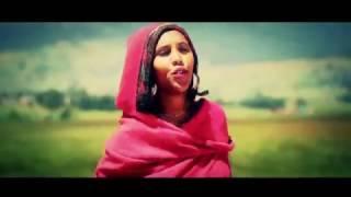 Hirut Negesue - Ferahugn(ፈራሁኝ) - New Ethiopian Music 2017(Official Video)