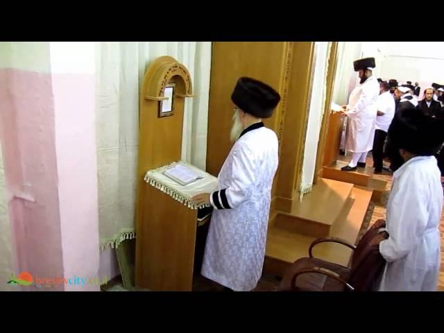 """אומן תשע""""א - מוהרא""""ש בתפילת ערבית מוצש""""ק"""
