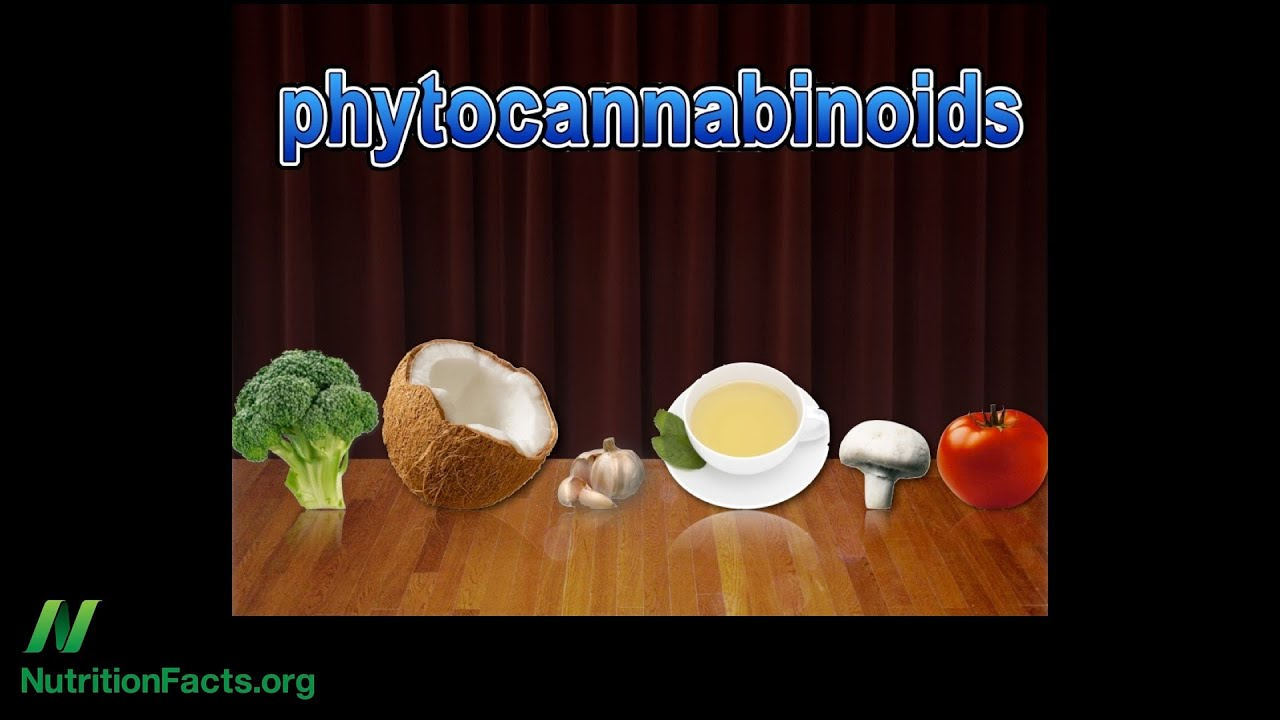 Cannabis Receptors & Food