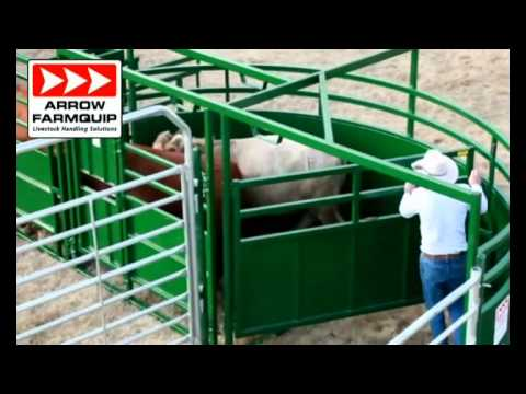 Portable Cattle Handling System Tub & Alley - Arrow Cattlequip