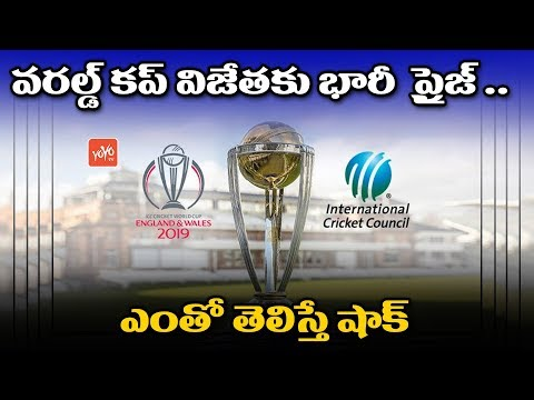 ICC Cricket World Cup 2019 : Prize Money For World Cup Winners | India | England | YOYO TV Channel