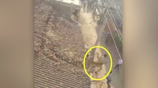 Watch: Leopard attacks rescue worker