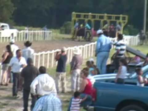 Carreras de North Carolina-El Coronel vs. El Jarocho.mov