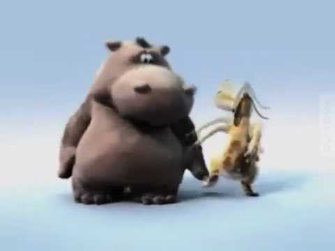 Happy Birthday To You Song By Hippo And Dog video