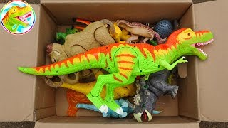 Open the toy box - Discover the fun dinosaur uncle - B1154C ToyTV