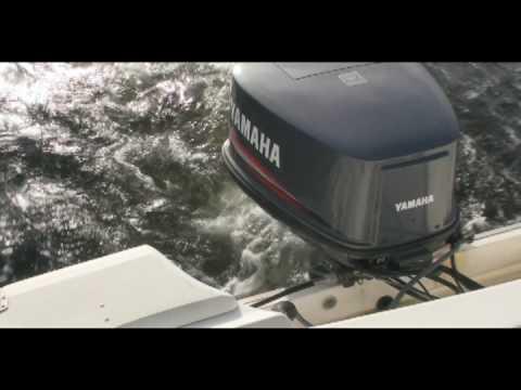 Yamaha 115 hp outboard youtube for Yamaha 115 outboard 2 stroke