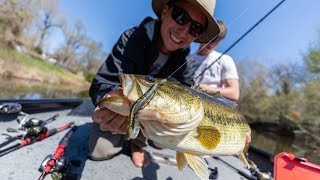 Catching BIG BEDDING Texas Bass (Road Trip Part 2)