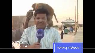 Top 10 funny videos in pakistani media