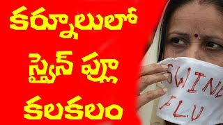 Swine Flu Cases In Kurnool   AP