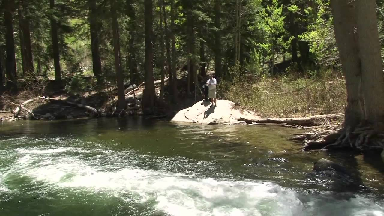 Eastern sierra stream fishing youtube for Eastern sierra fishing