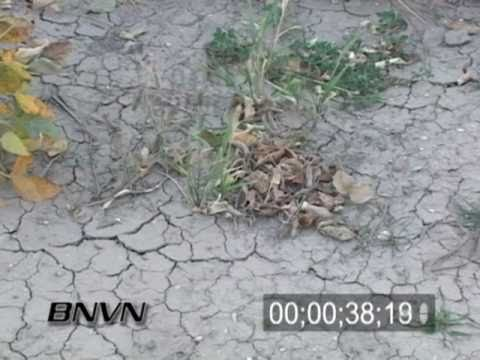 9/17/2007 Dry Cracked Ground Drought Footage
