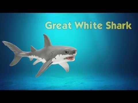 Safari Ltd Wild Safari Sea Life Great White Shark