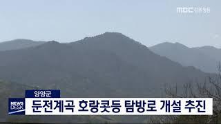 양양] 둔전계곡 호랑콧등 탐방로 개설 추진