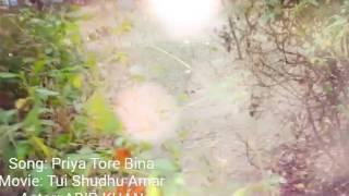 Priya tore bina  music video by shamim khan